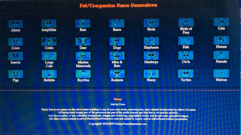 Fantasy Name Generator 3