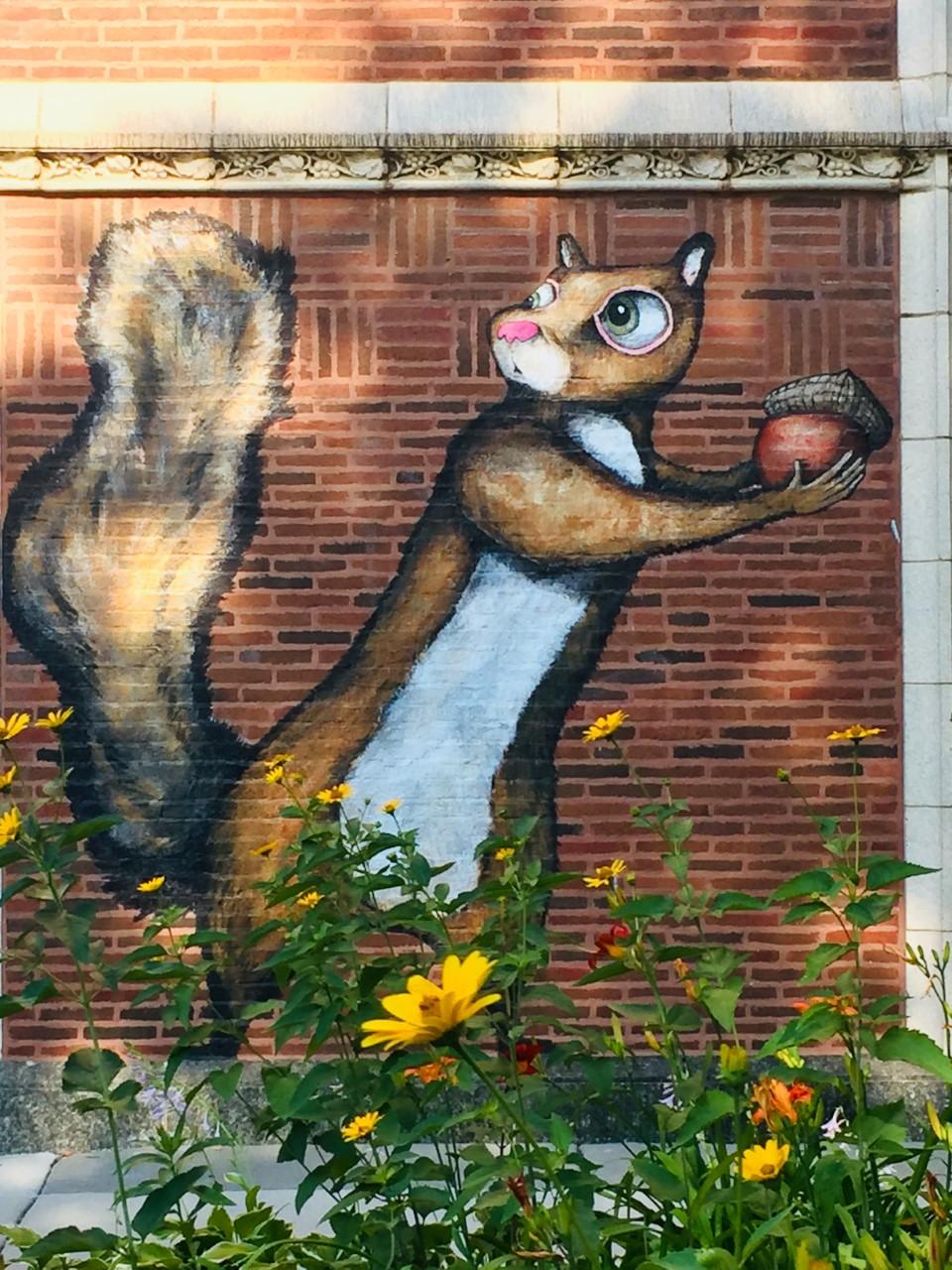 Squirrel - street art 2