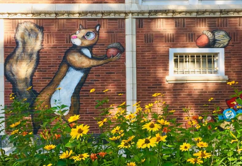Squirrel - street art